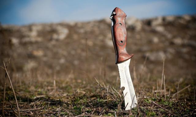 Ножи для выживания в экстремальных условиях леса: рейтинг лучших моделей по мнению экспертов